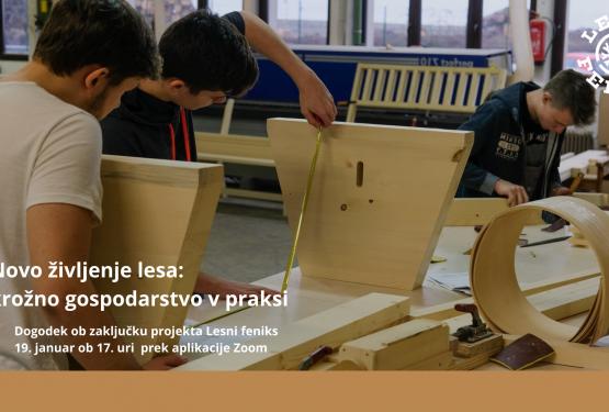 Novo življenje lesa: krožno gospodarstvo v praksi